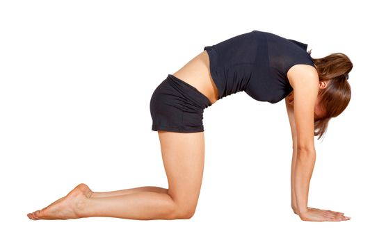 5 Simple Morning Yoga Stretches to Energise Your Day | Dare2b